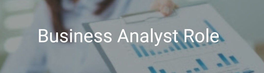 Business Analyst Role