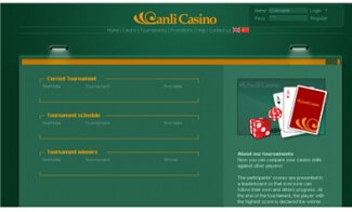 Casino Website Creation