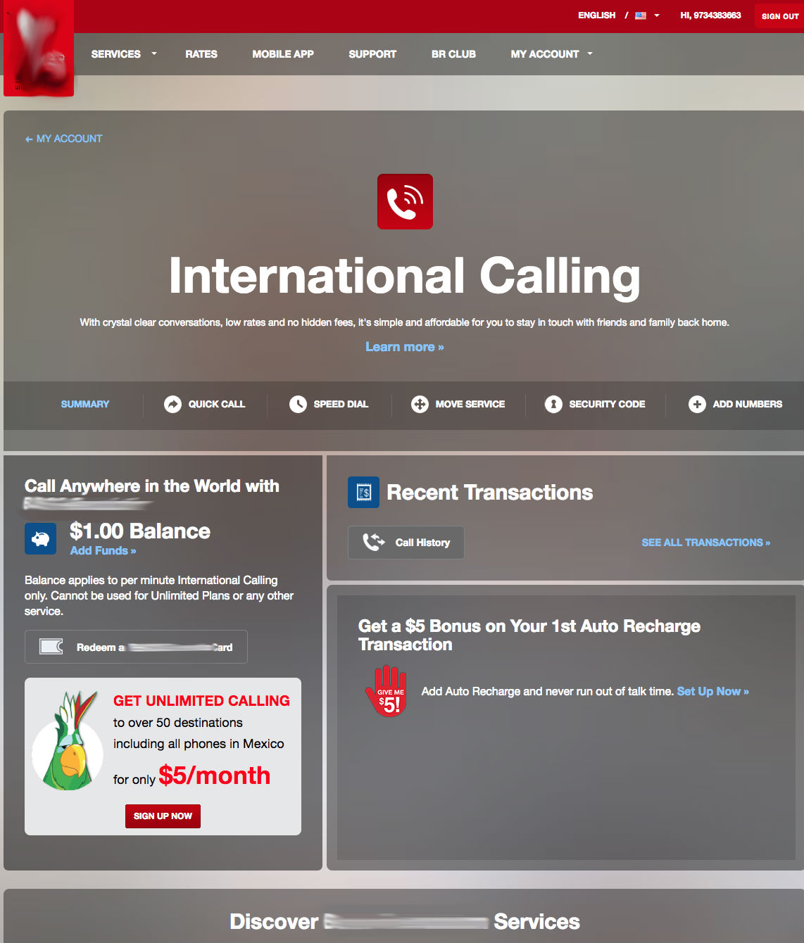 SAAS Web Application for the International Calling Company