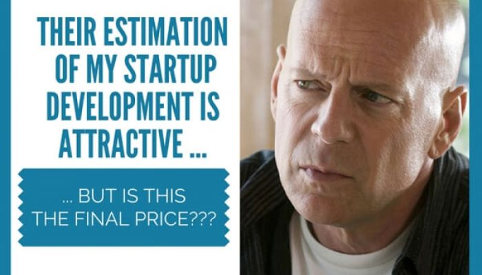 How Much Does a Custom Software Development Cost